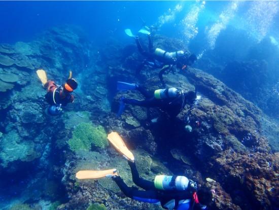 鹿児島の透明な海