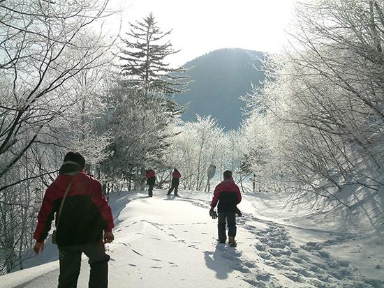 寒い冬だからこそ見られる景色を見に行こう!