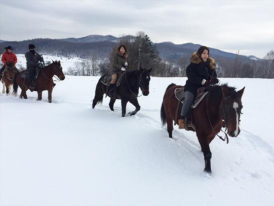静寂に包まれた世界を馬と共に感じてみよう!