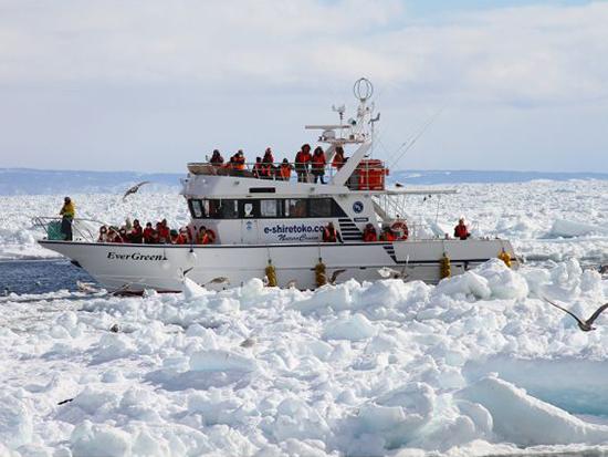 流氷にも負けない観光船で根室海峡をクルーズ!