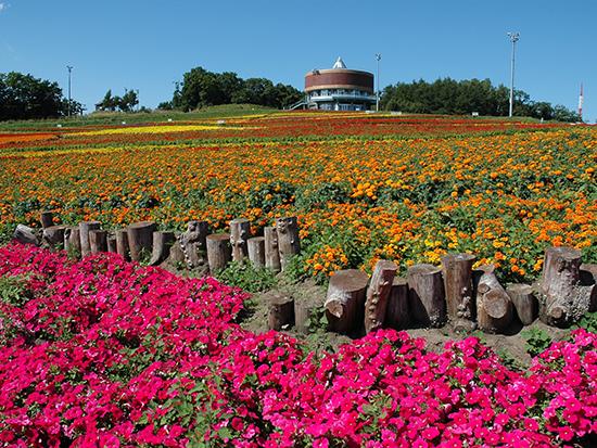 オホーツクの観光スポットをめぐるレストランバス北海道in網走!