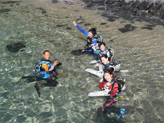 縄文杉トレッキング+体験ダイビング