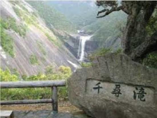 屋久島の大自然を堪能「島内観光」