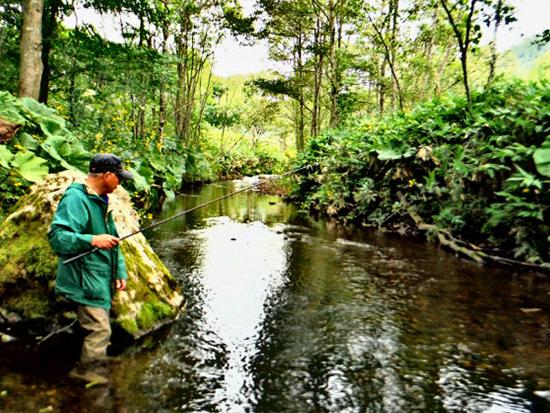 天然魚が釣れる厳選ポイントへ!釣り名人がご案内します