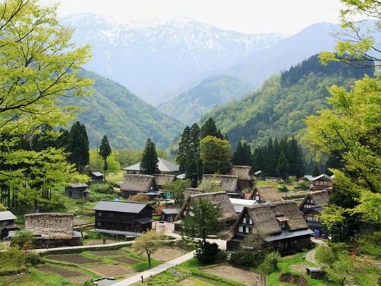 世界遺産の絶景を満喫する金沢駅発の南砺市日帰り旅
