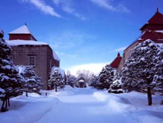 冬の小樽 ※イメージ画像