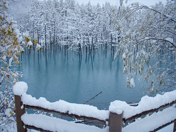 Shirogane blue pond (image)