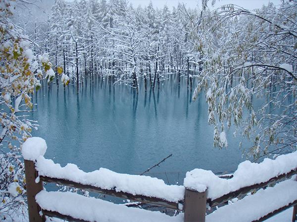 Shirogane blue pond (image)