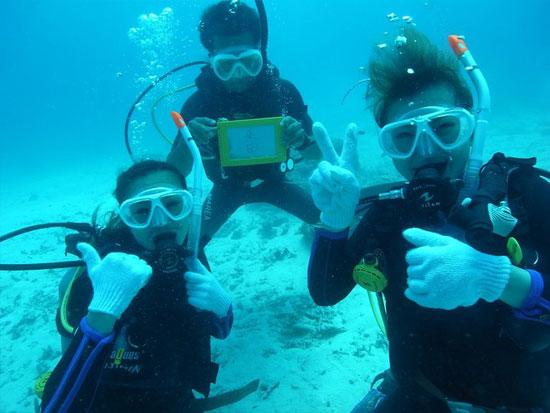 感動の潜水体験をあなたに!初心者向け体験ダイビング!