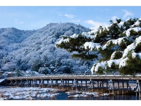 嵐山、金閣寺、奈良東大寺 バイキング