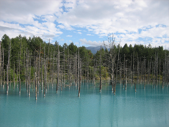 Platinum blue pond (image)