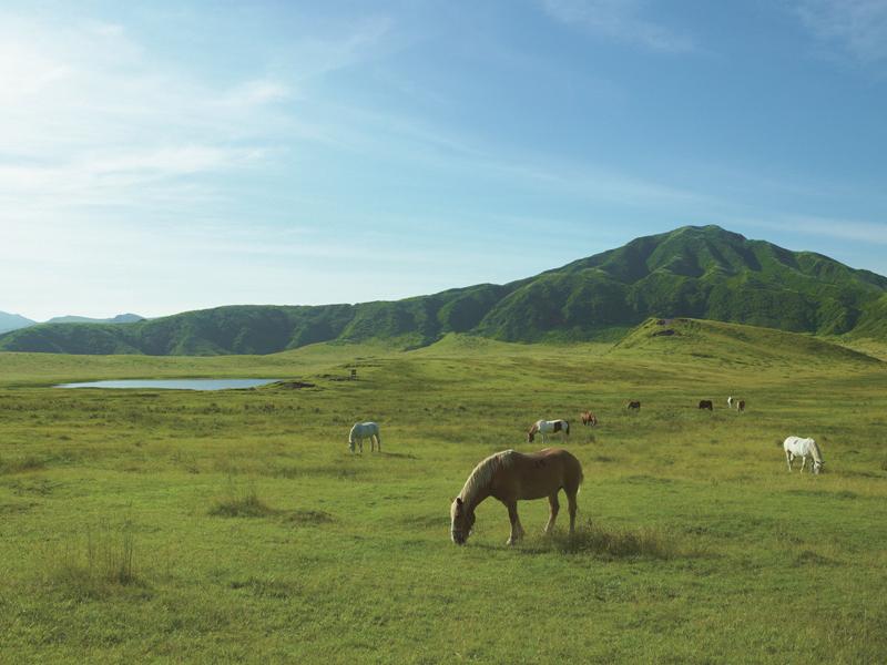 草千里の絶景