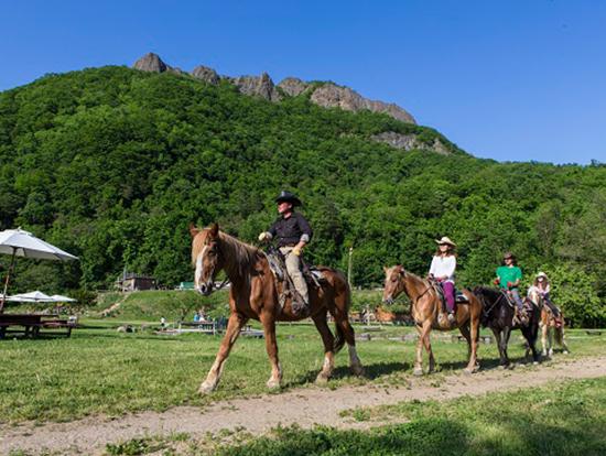 札幌の奥座敷、山々に囲まれた牧場で気軽に乗馬を!ワイルドな乗馬体験や基礎レッスンができます♪