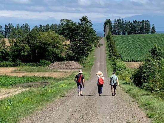 ガイドと一緒に北海道らしい雄大な小麦畑を散策!