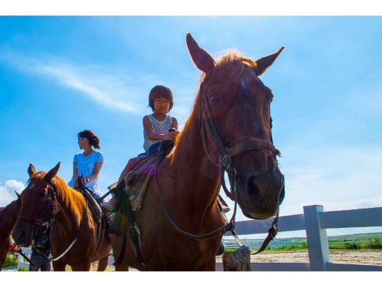乗馬体験(ホーストレッキング:インディアンコース)