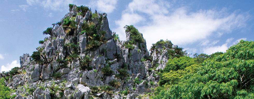 悟空岩(イメージ)