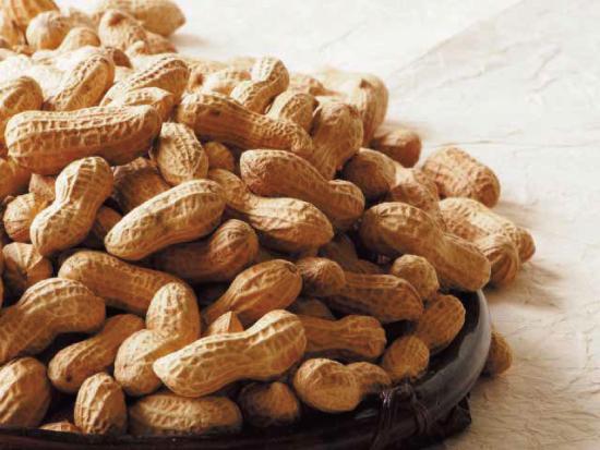 Peanut harvest experience