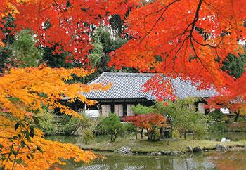 浄瑠璃寺イメージ