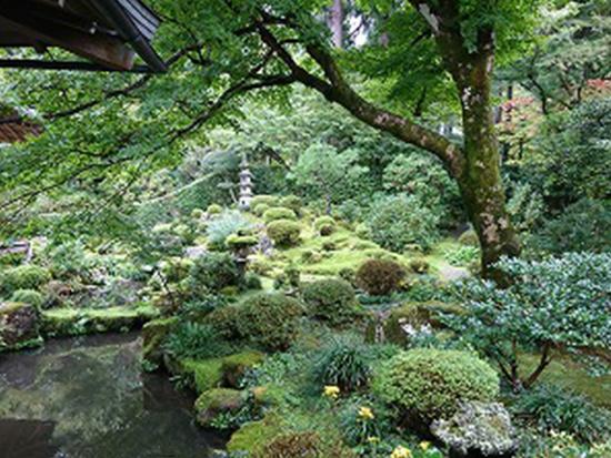 三千院 池泉式庭園