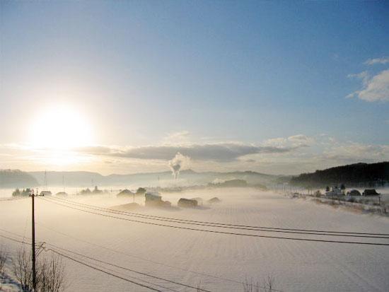 氷点下の世界で水と氷の芸術作品を探しに行こう!朝のさんぽ道!