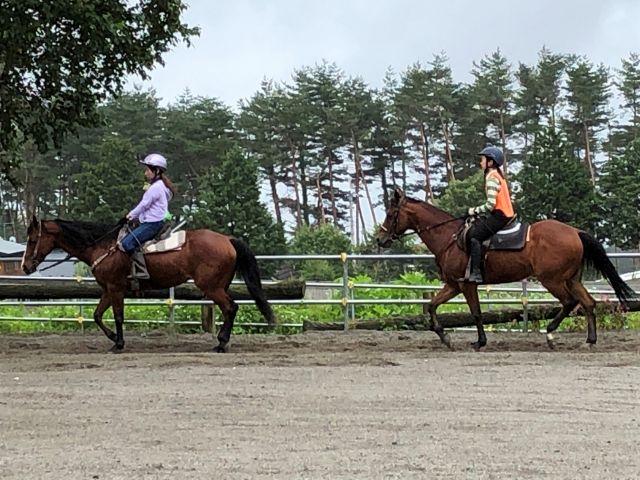 【乗馬レッスン】初心者の方も安心♪ お手軽にできる乗馬体験プランをご用意いたしました。
