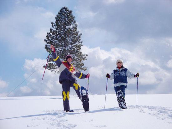 【冬季】富良野 スノーシュートレッキング