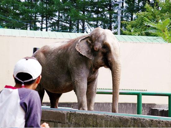 家族でのんびり思い出づくり!おびひろ動物園 バスパック
