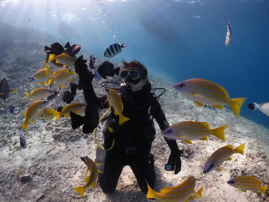 美ら海 体験ダイビング