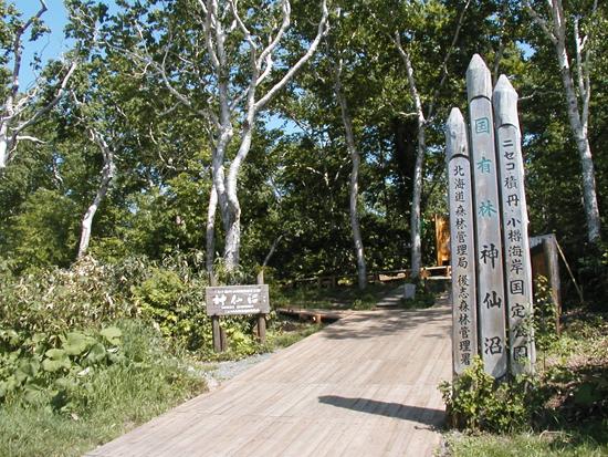 神秘的な雰囲気をかもし出す美しき沼・神仙沼への散策