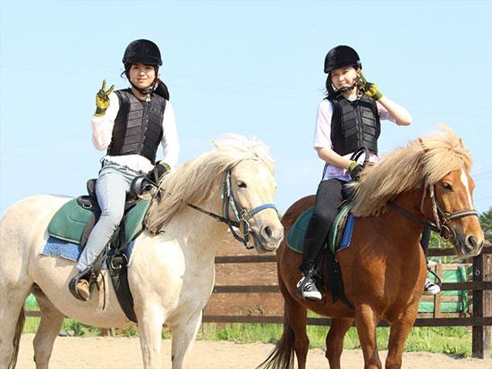めんこい道産子馬に乗って草原をお散歩♪ 初心者OK!