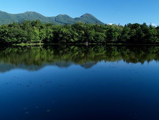 知床五湖:穏やかな日、鏡のような湖面に木々の深い緑と山並みが映り込みます。