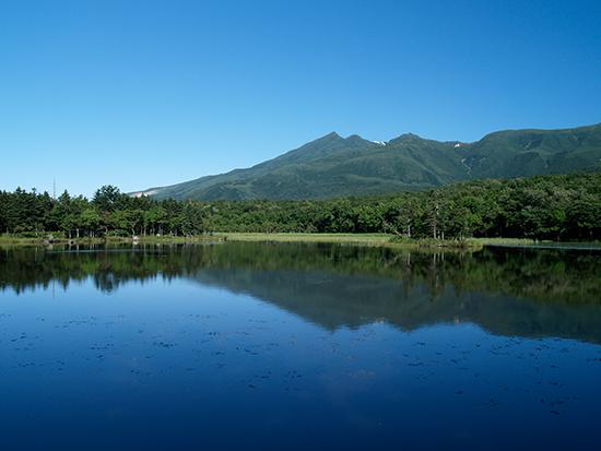 晴れた風のない日には、知床五湖に山並みが映り込む美しい風景がご覧いただけます。