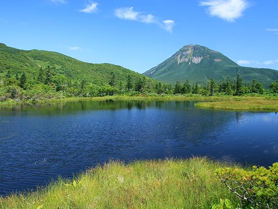 羅臼湖へ向かう途中には4つの表情の異なる沼を廻ります。