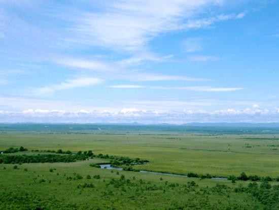 釧路湿原(一例)