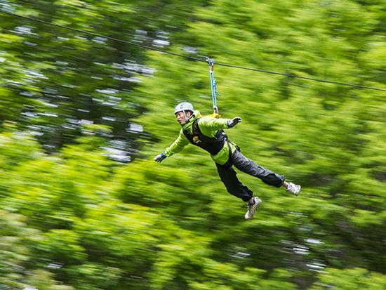 森の中を生き物の目線で滑空する、エアトリップ