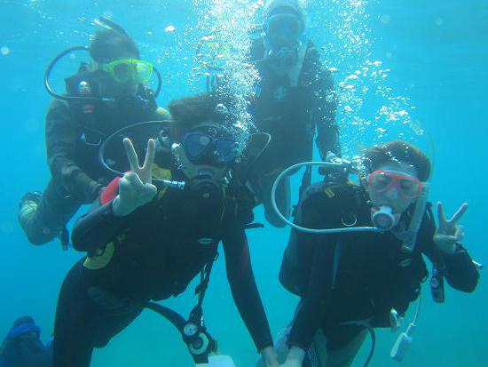 北海道遺産に認定された積丹ブルーの海で、 体験ダイビング!