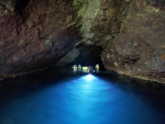 沖縄で大人気のプログラムが北海道初上陸! 水中ライトで水の中を照らしながらのヤコウチュウツアーはまるで大冒険♪