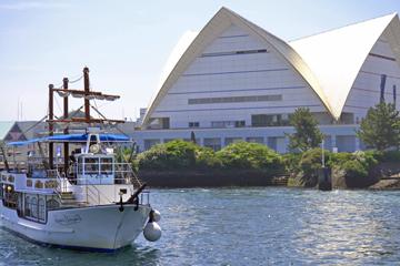 波穏やかな錦江湾